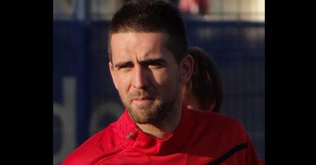 Na fotografiji je prikazan fudbaler: Vedad Ibišević