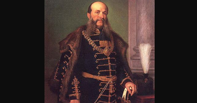 Na fotografiji je prikazan političar, književnik, lingvist: Ivan Mažuranić