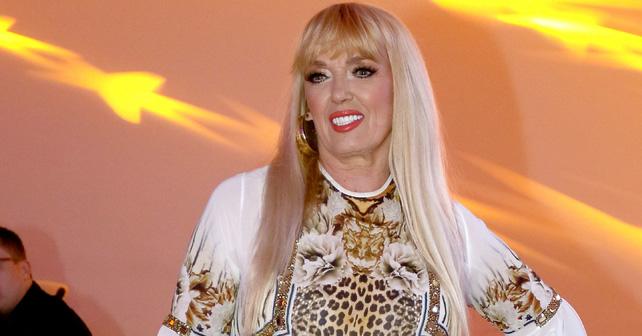 Na fotografiji je prikazan pevačica: Branka Sovrlić